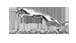 JAGUAR – wyjątkowa, niepowtarzalna limuzyna na TWÓJ Ślub Logo